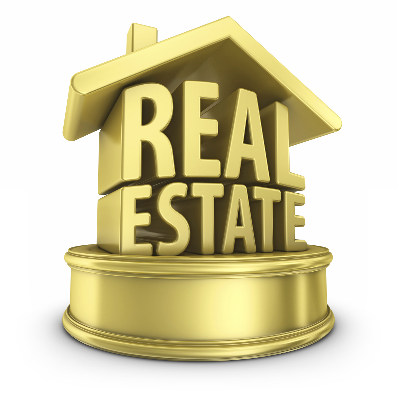 Why Real Estate Professionals Are Important While Making Real Estate Transactions