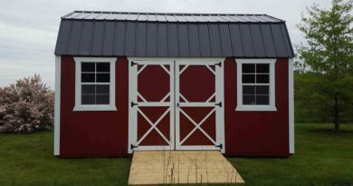 Finding Custom Options For Your Shed